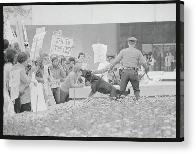 Crowd Acrylic Print featuring the photograph Crowd Protesting President Nixon by Bettmann