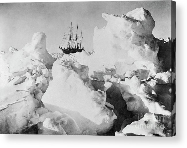 1914-17 Imperial Trans-antarctic Expedition Acrylic Print featuring the photograph Ernest Shackletons Ship Endurance by Bettmann