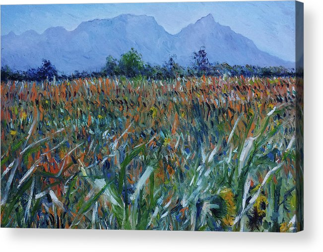 Table Mountain Acrylic Print featuring the painting Table Mountain Cape Town South Africa 2016 by Enver Larney