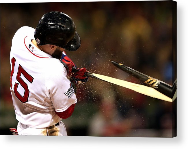 St. Louis Cardinals Acrylic Print featuring the photograph Dustin Pedroia by Jamie Squire