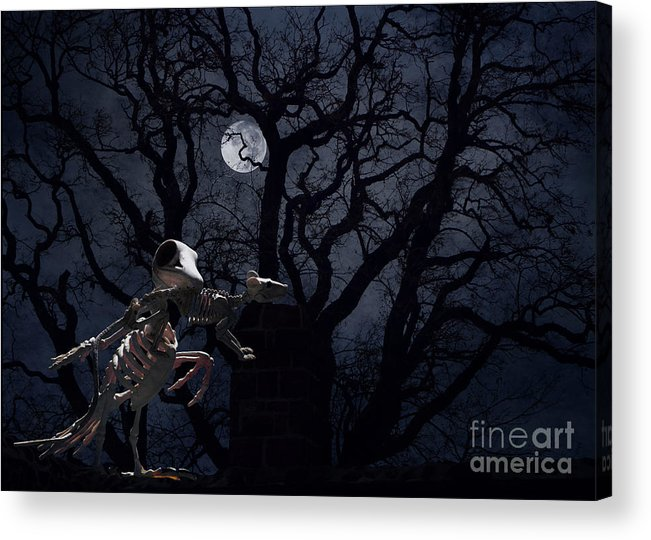 Raven Acrylic Print featuring the photograph Raven and Rat Skeleton in Moonlight - Halloween by Colleen Cornelius