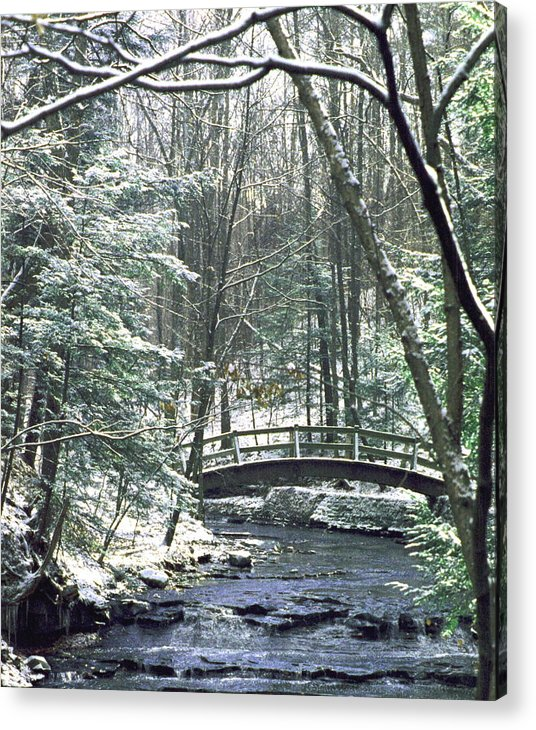 Snow Acrylic Print featuring the photograph 092508-1 by Mike Davis