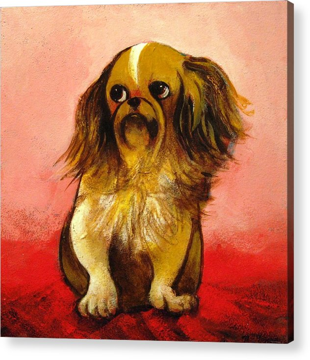 Dog Acrylic Print featuring the painting Pekinese by Christine McGinnis