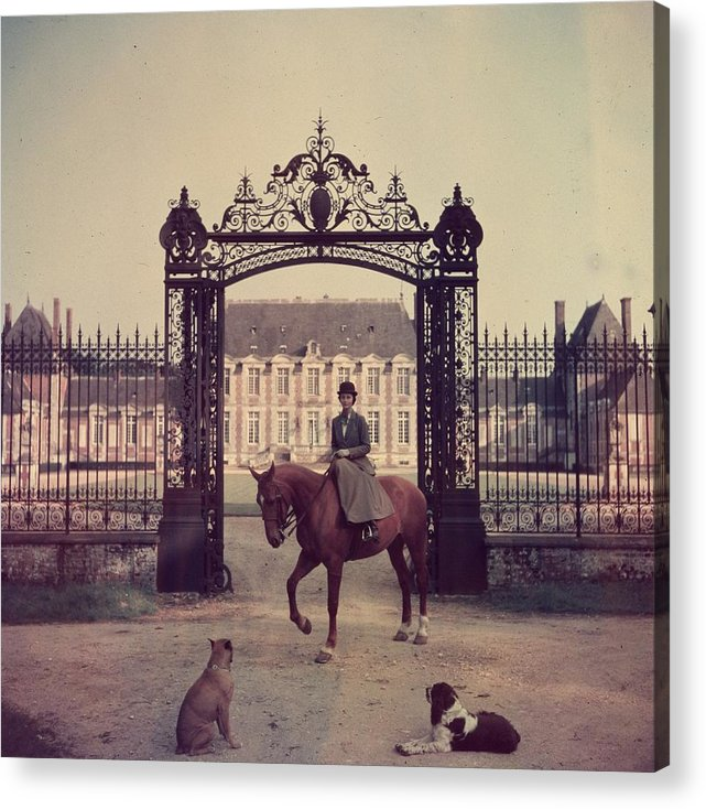 Horse Acrylic Print featuring the photograph Equestrian Entrance by Slim Aarons