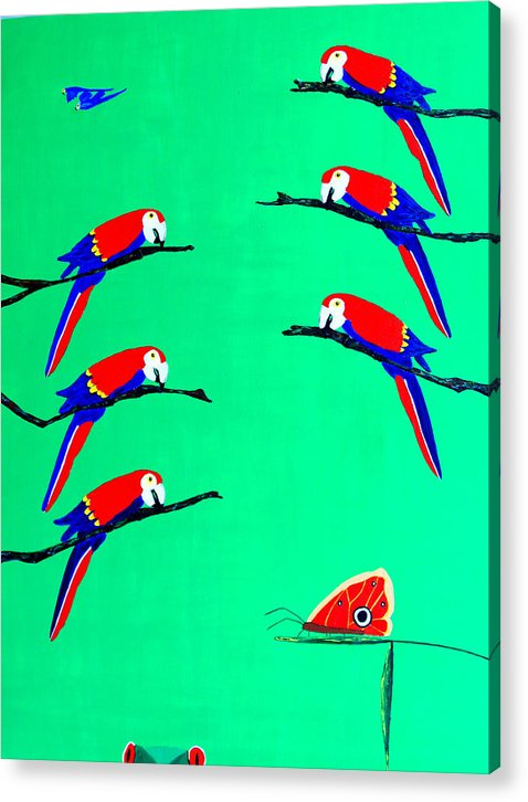 Caribbean Acrylic Print featuring the painting Macaw Ladder by Sula Chance