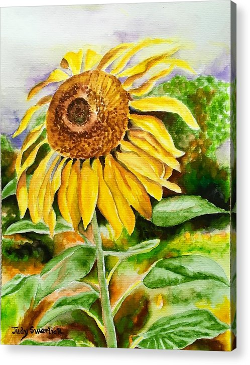 Sunflower. Yellow Acrylic Print featuring the painting Sunflower by Judy Swerlick
