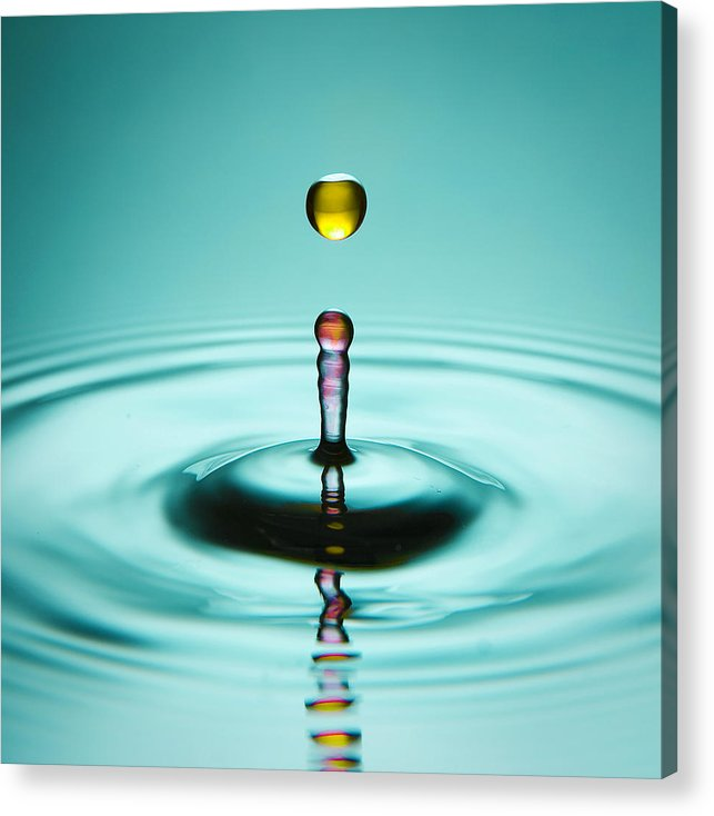 Water Acrylic Print featuring the photograph Water Landing by Ryan Heffron