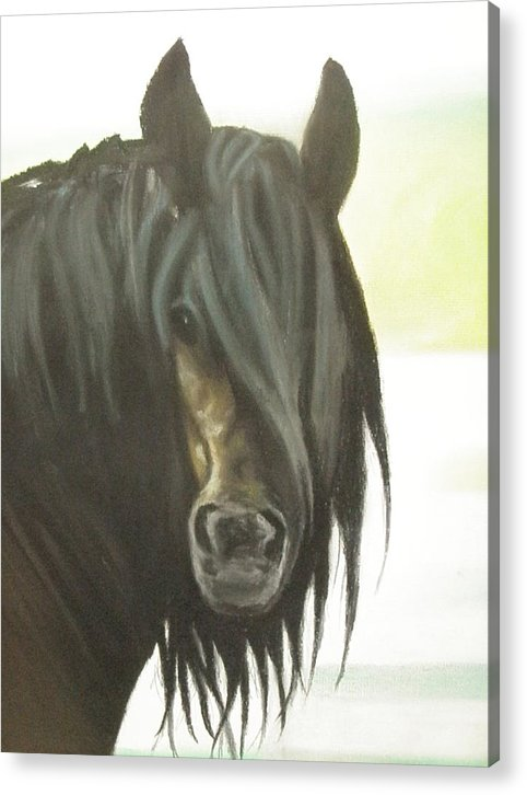 Horse Acrylic Print featuring the pastel Scuze Me by James Holding