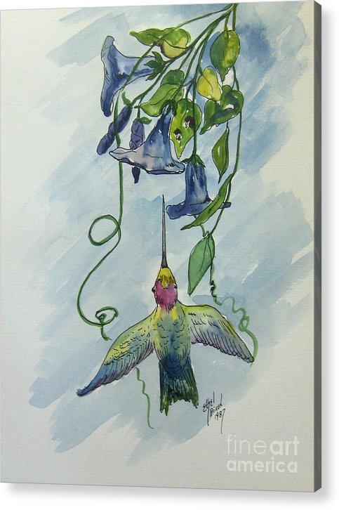 African American Art Acrylic Print featuring the painting Hummingbird 1 by Ethel Dixon