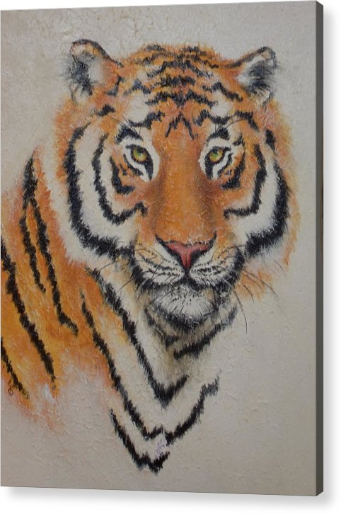 Tiger Acrylic Print featuring the painting Tiger Portrait by Renee Shular