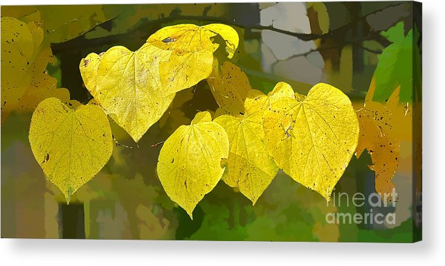 Leaves Acrylic Print featuring the photograph A Chorus Of Hearts by Michael Flood