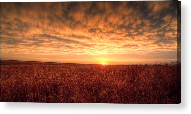 Sunset Acrylic Print featuring the photograph Endless Oz by Thomas Zimmerman