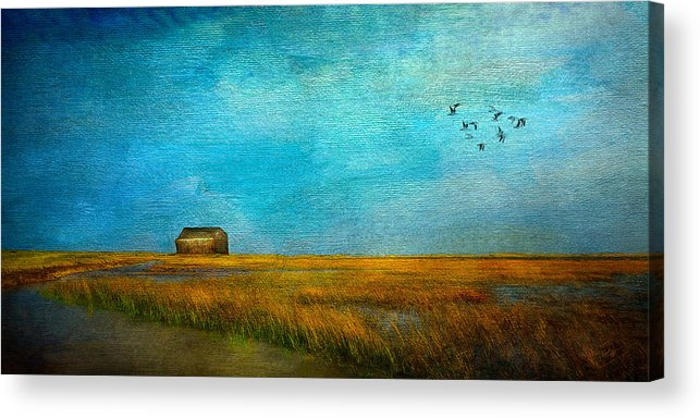 Sea Acrylic Print featuring the mixed media Salt Marsh by Michael Petrizzo