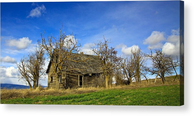 Pioneers Acrylic Print featuring the photograph The Old Farm House by Steve McKinzie