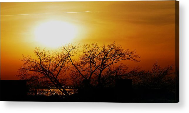 Landscape Acrylic Print featuring the photograph Branches by Kendall Eutemey
