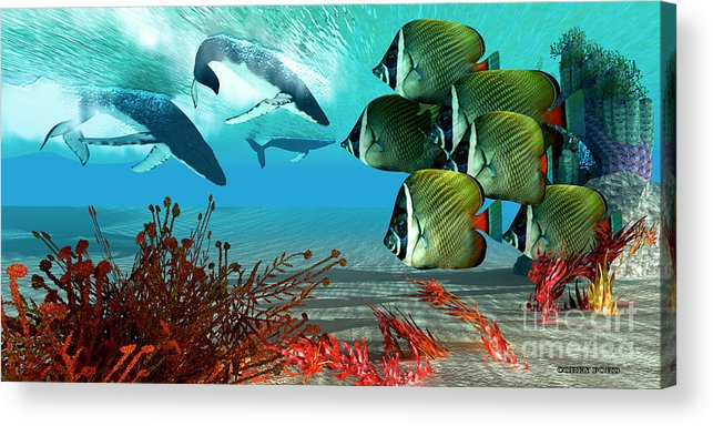 Whale Acrylic Print featuring the painting Diving Whales by Corey Ford