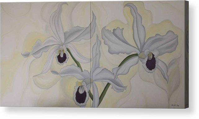 Marinella Owens Acrylic Print featuring the painting Lealia Purpurata  Orchide by Marinella Owens