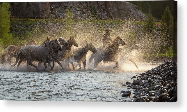 Cowboy Acrylic Print featuring the photograph Morning Crossing by Jack Bell