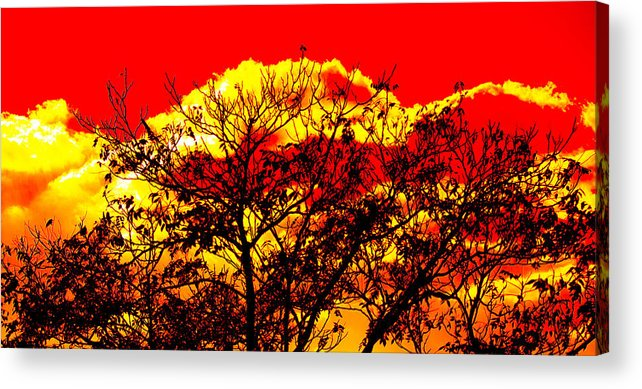 Landscape-colorful Clouds Acrylic Print featuring the photograph Sunnsett by Theresa Cummings