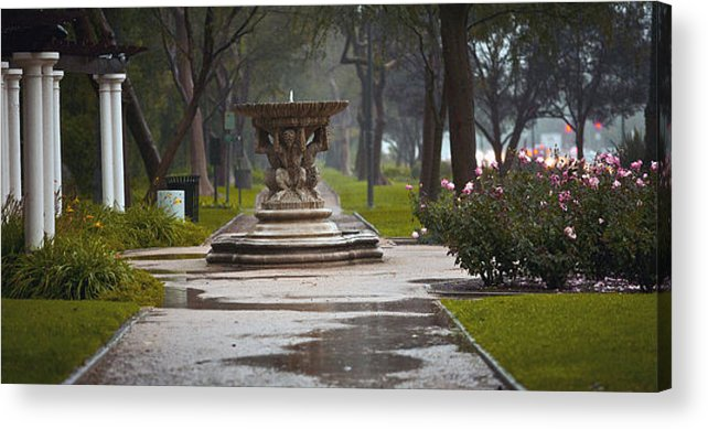 Beverly Hills Acrylic Print featuring the photograph Misty by Frank Turner
