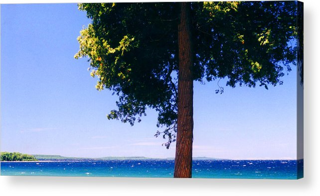 Landscape Acrylic Print featuring the photograph Tree By The Lake 3 by Lyle Crump