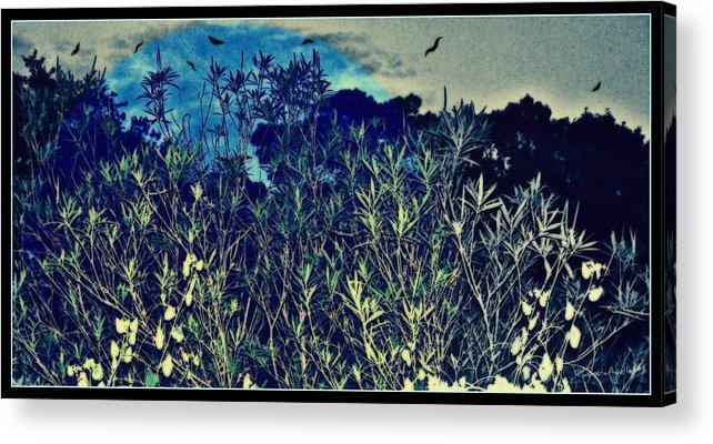 Landscape Acrylic Print featuring the mixed media Back Yard Sky by YoMamaBird Rhonda