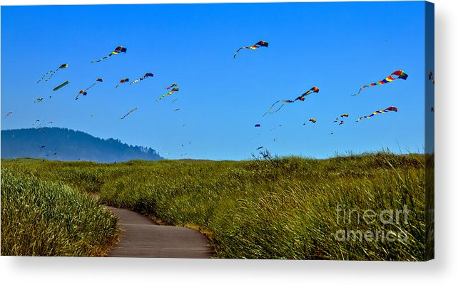 Haybales Acrylic Print featuring the photograph Kites by Robert Bales