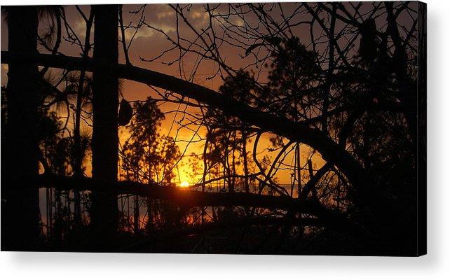 Sunset Acrylic Print featuring the photograph Louisiana Sunset by Heather S Huston