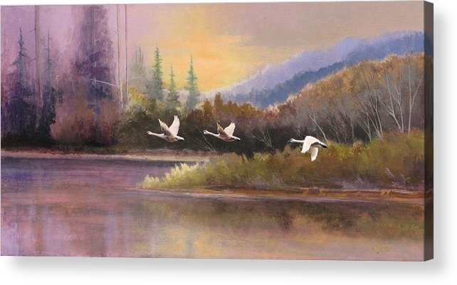 Landscape Acrylic Print featuring the painting Northern Flight by Dalas Klein