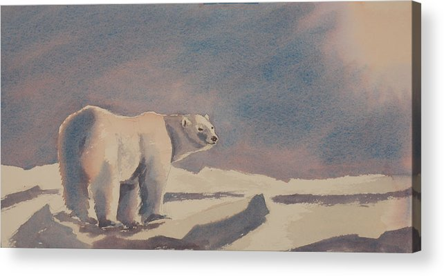 Polar Bear Acrylic Print featuring the painting Solitary Polar Bear by Debbie Homewood
