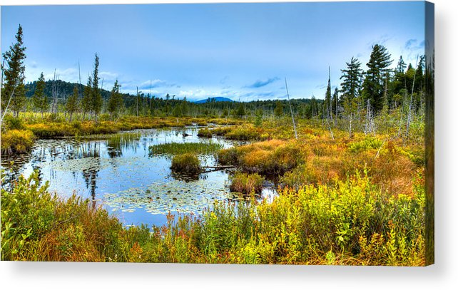 Adirondack's Acrylic Print featuring the photograph Browns Tract Inlet Waterway by David Patterson