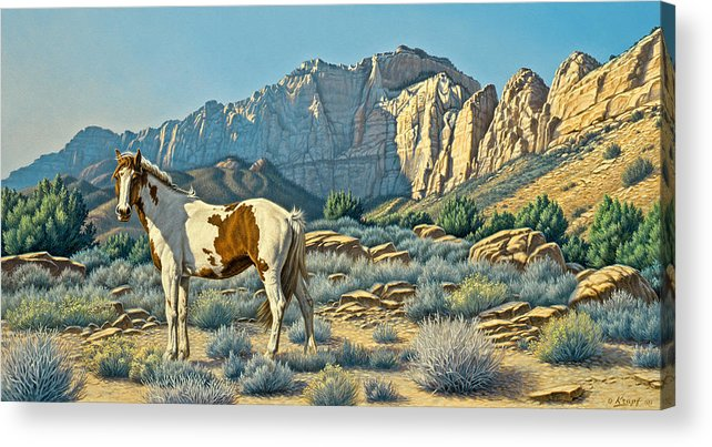 Landscape Acrylic Print featuring the painting Canyon Country Paints by Paul Krapf