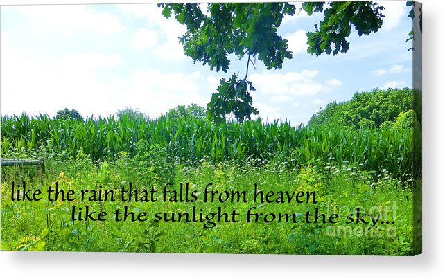 Inspirational Quote Acrylic Print featuring the photograph Like The Rain by Tina M Wenger