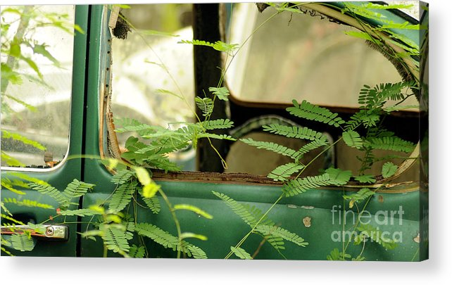 Vw Acrylic Print featuring the photograph Vw Bug Going Green by Nancy Greenland