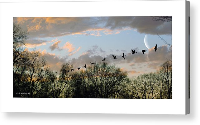 2d Acrylic Print featuring the photograph Winter Sunset Silhouette by Brian Wallace