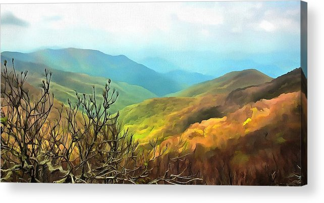 Mountains Acrylic Print featuring the photograph Blueridge - Spring by Judy Coggin