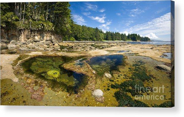 Botanical Beach Acrylic Print featuring the photograph Botanical Beach by Matt Tilghman