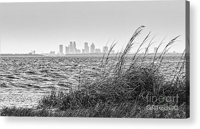 Tampa Bay Acrylic Print featuring the photograph Tampa Across The Bay by Marvin Spates