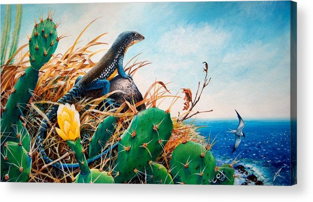 Chris Cox Acrylic Print featuring the painting St. Lucia Whiptail by Christopher Cox