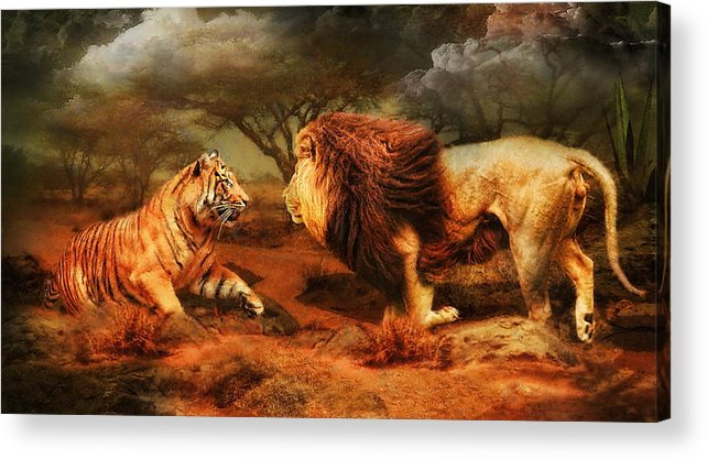 Lion Acrylic Print featuring the photograph No Mercy by Trudi Simmonds