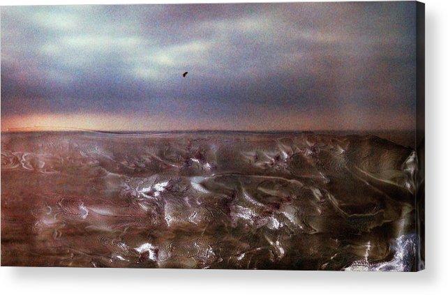 Paul Tokarski Acrylic Print featuring the photograph Lonely Flight by Paul Tokarski