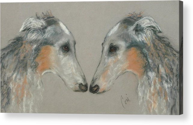 Dog Acrylic Print featuring the drawing Nose To Nose by Cori Solomon