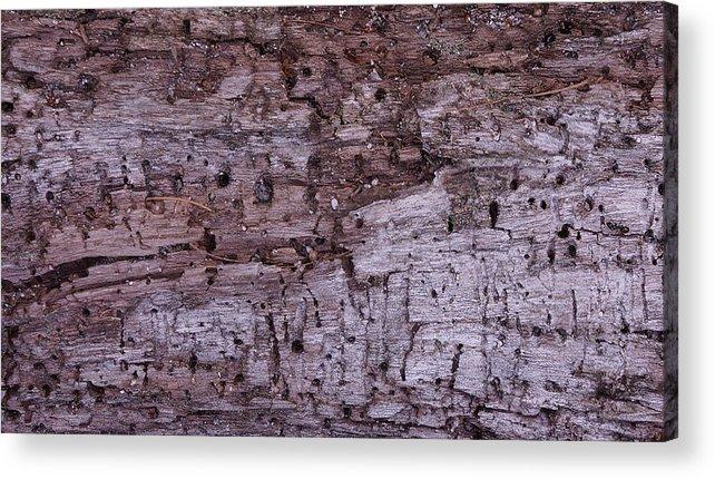 Wood Acrylic Print featuring the photograph Aged Wood by Dawn Hagar