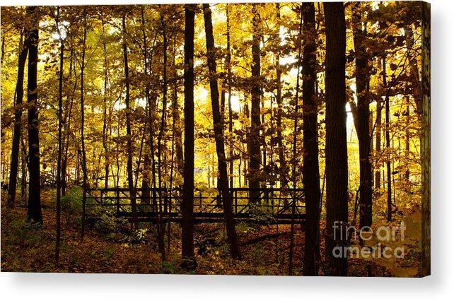Autumnal Acrylic Print featuring the photograph Autumn Bridge I by Valerie Fuqua