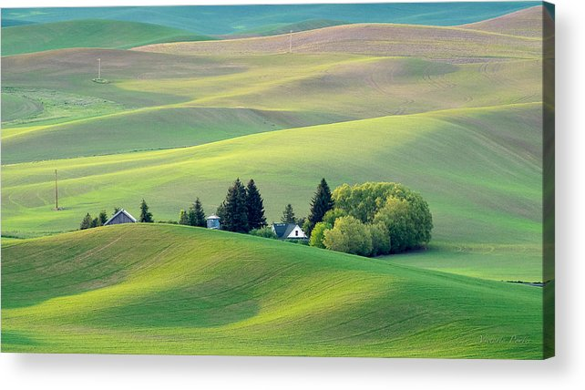 2014 Acrylic Print featuring the photograph Farm Buildings Nestled In The Palouse Country by Victoria Porter