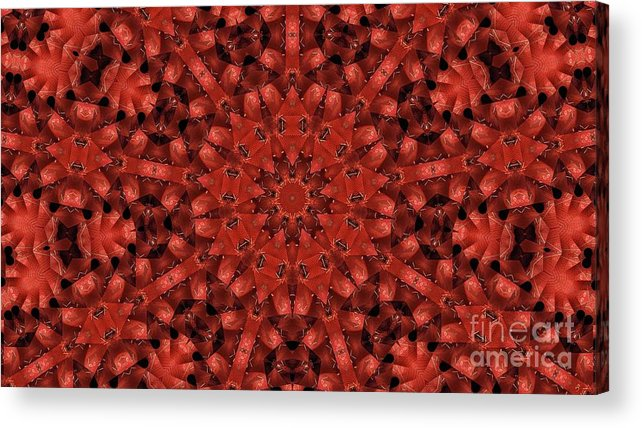 Kaleidoscope Acrylic Print featuring the photograph Kaleidoscope 60 by Ron Bissett