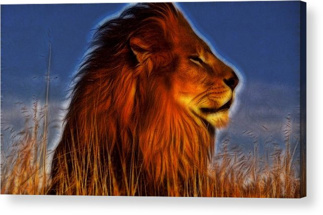 Lion Acrylic Print featuring the digital art Lion - King Of Animals by Lilia D