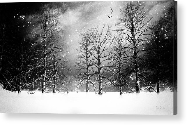 Winter Acrylic Print featuring the photograph One Night In November by Bob Orsillo