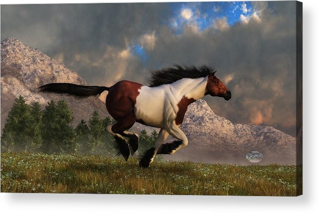 Hidalgo Acrylic Print featuring the digital art Pinto Mustang Galloping by Daniel Eskridge