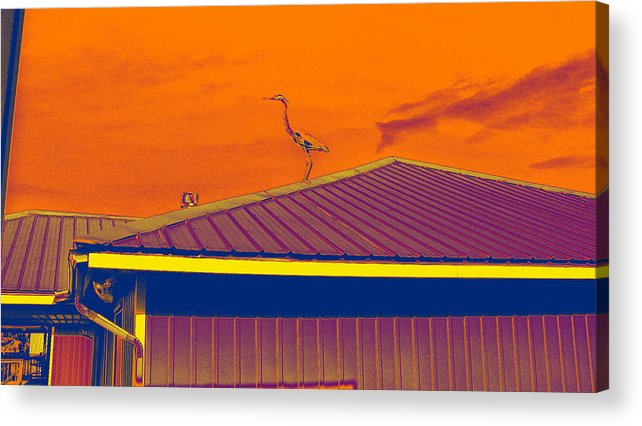 Computer Graphics Acrylic Print featuring the photograph Surrealist Heron by Marian Bell